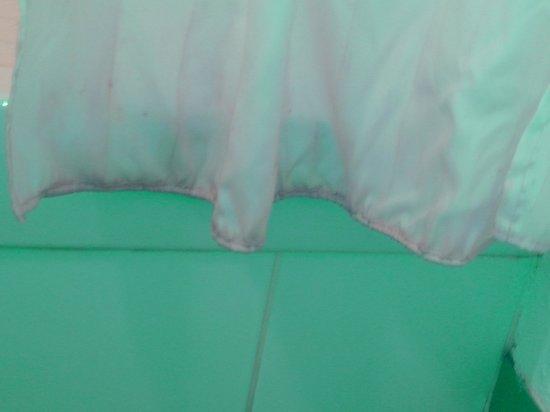 Ibis Budget Lille Villeneuve d'Ascq: rideau de douche pourri