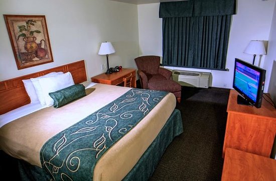 Oak Tree Inn: Guest Room