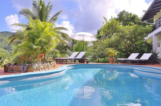 Marigot Palms Luxury Caribbean Guesthouse and Apartments: poolview and garden