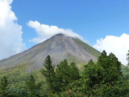 Hotel Campo Verde : Arenal Volcano