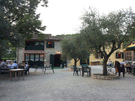 Giardino con ulivi picture of le fornaci este tripadvisor - Giardino con ulivi ...