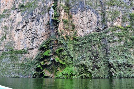 Cañón del Sumidero : cascata dell'albero di natale