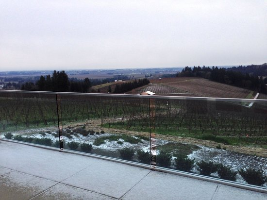 Winderlea Vineyard and Winery: What a great view with a little dusting of snow at a great winery.