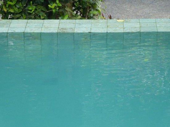 Y Resort Ubud: entsetzlich trüber Pool