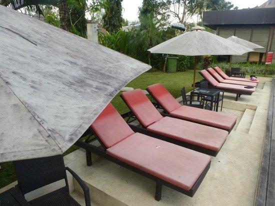 Y Resort Ubud: Schmutzige Liegen