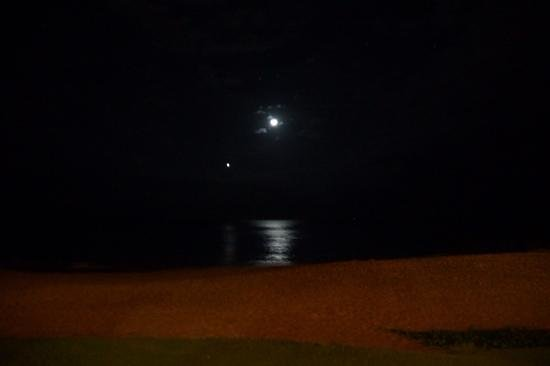 Sarento's on the Beach - Maui: A very romantic dinner with a fantastic view