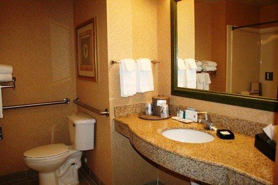 Hampton Inn & Suites Lamar: Accessible Bath Vanity