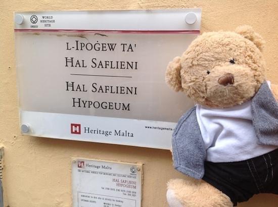 Hypogée de Ħal Saflieni : bear visits the hypogeum