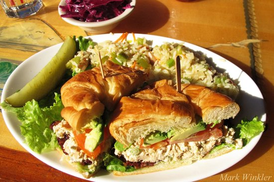Great American Fish Co : Tuna salad on croissant