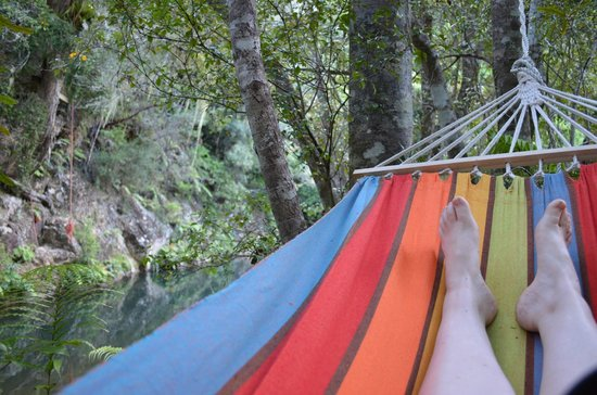 Wairua Lodge - The Hidden River Valley : Relaxing in the Hammocks