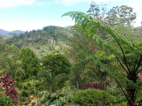 Pousada Monte Verde: Vista do quarto