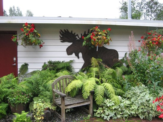 Camai Bed and Breakfast Inn: Carol's garden