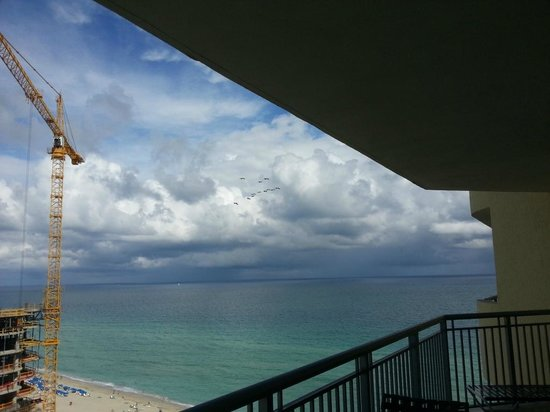 Doubletree by Hilton Ocean Point Resort & Spa - North Miami Beach: pelicans over beach