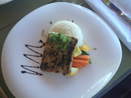 Cafe Conchal & Wine Bar: Grilled fresh Mahi Mahi, strawberry and cucumber relish, jasmine rice and sauteed veggies