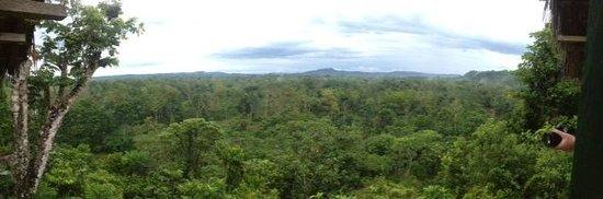 Yacuma Ecolodge: Uitzicht van viewpoint