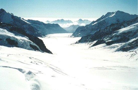 Aletsch Glacier: アレッチ氷河