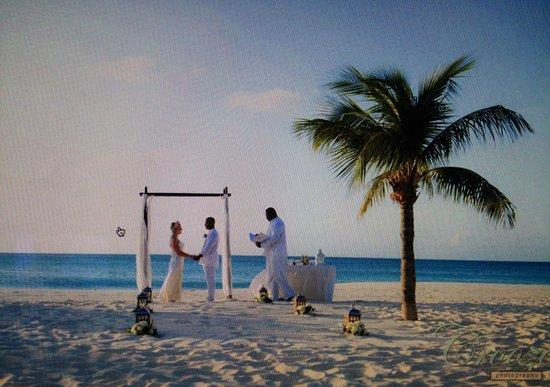 Bucuti & Tara Beach Resort Aruba: Our dream