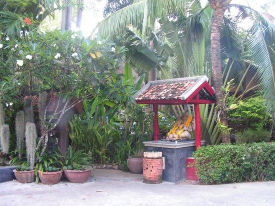 Kata Country House: Территория отеля