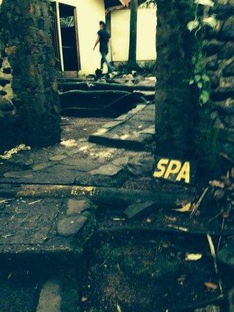 Termales del Bosque: the spa