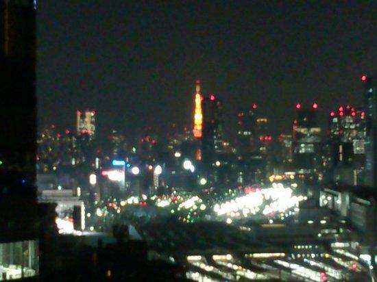 Tokyo Marriott Hotel: 眺望
