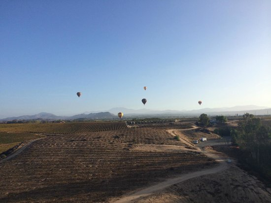 California Dreamin' Balloon Adventures : Amazing view! Great Experience!