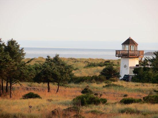 Gold Beach Resort: View from balcony