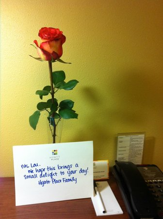 Hyatt Place Denver Airport: Unexpected greeting!