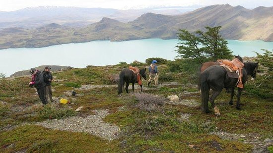 Las Torres Patagonia: Lunch for the horses close to the Bador Valley