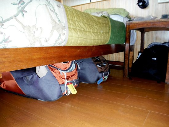 Manatee Amazon Explorer: Plenty of storage under the bed - worked for us.