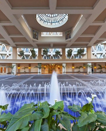 The Westin Camino Real: Fountain