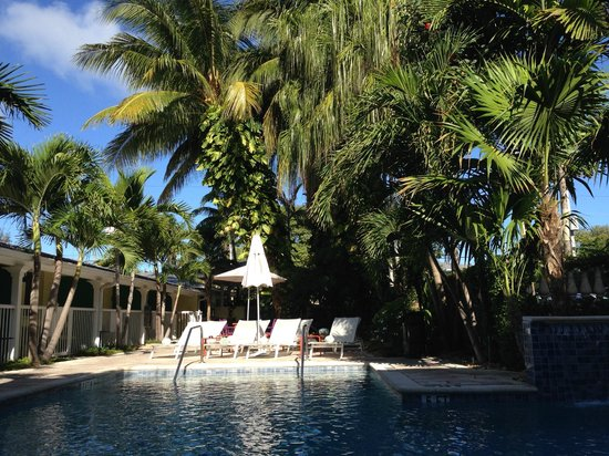 Almond Tree Inn: Poolside
