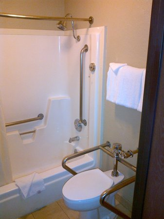 Ramada Mesa Phoenix East Area: Didn't ask for a handicap bathroom, but got one.