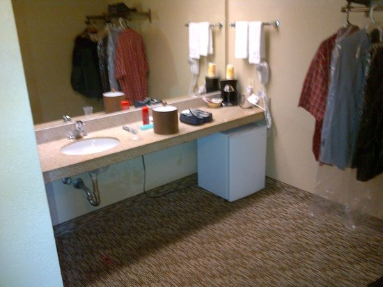 Dobson Ranch Inn and Suites: Dressing area