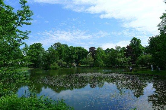 Halifax Public Gardens : nice little lake, pond?