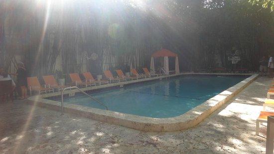 Catalina Hotel & Beach Club: Pile