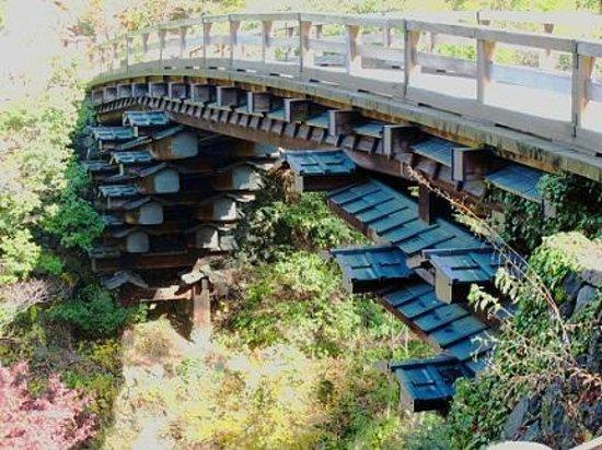 Saru Bridge : 両岸から屋根付き別木を四段に組んだ美しい構造