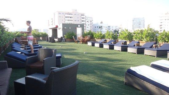 Catalina Hotel & Beach Club: Solarium