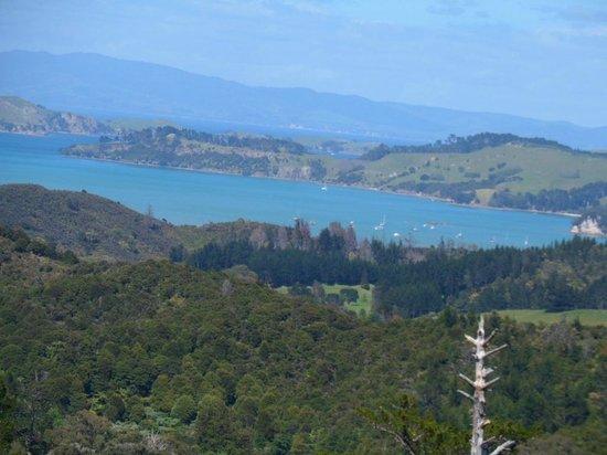Driving Creek Railway and Potteries: The Hauraki Gulf from Eyefull Tower