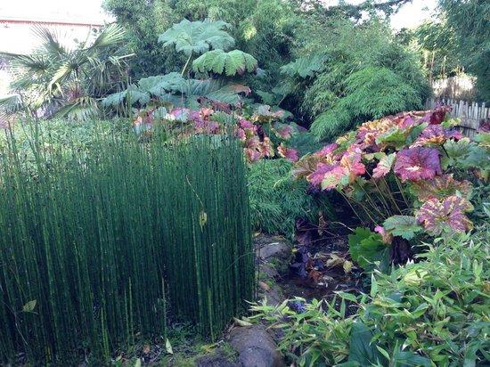 Dublin Zoo: Exotic gardens