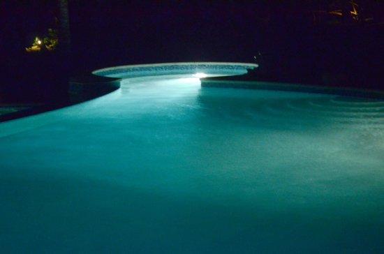 Hamanasi Adventure and Dive Resort: Pool at night