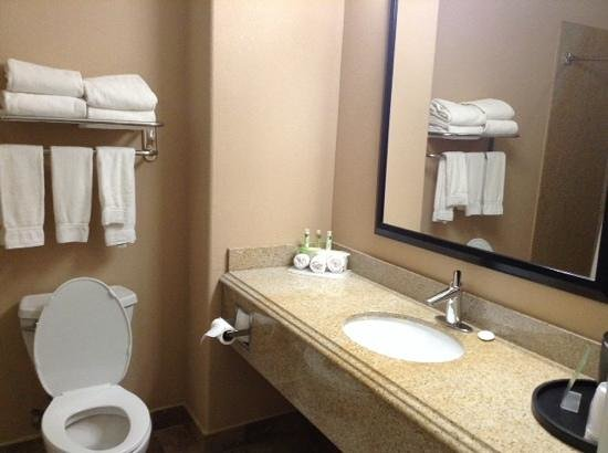 Holiday Inn Express Hotel & Suites Katy: bath