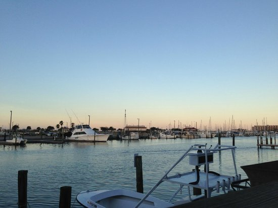 Fins Grill and Icehouse : Harbor view at sunset