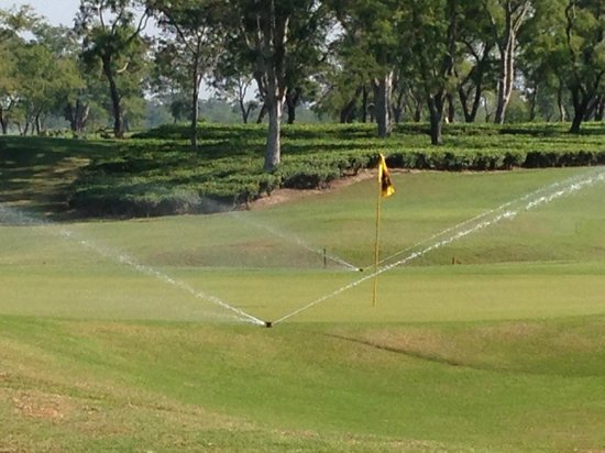Kaziranga Golf Resort : Golf Course