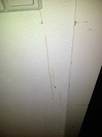 NH Naarden: paredes cerca interruptor entrada