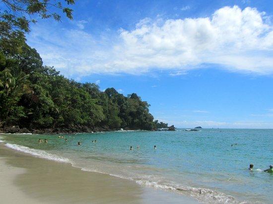 Costa Rica Marriott Hotel San Jose : beautiful Costa Rican beach