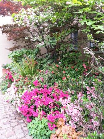 B&B Casa Angela: Un angolo del giardino in primavera