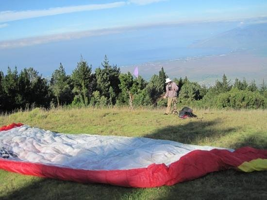 Proflyght Paragliding: Dexter getting the wing ready.