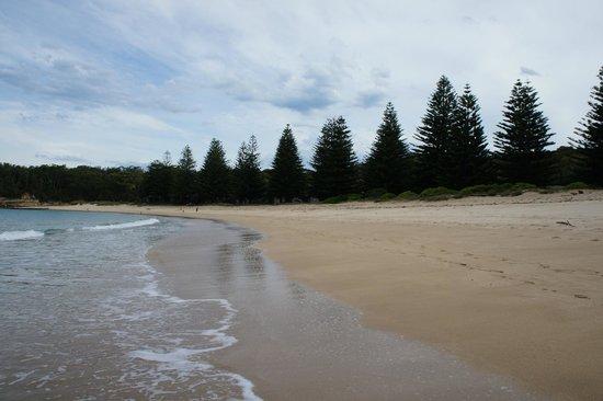 NRMA Murramarang Beachfront Nature Resort : Mill Beach in front of resort