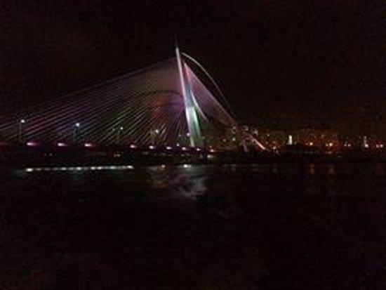 Le pont de Putrajaya : Putrajaya Bridge