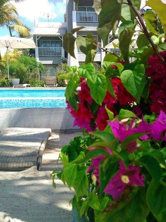 Mon Choisy Beach Resort : jardin et piscine